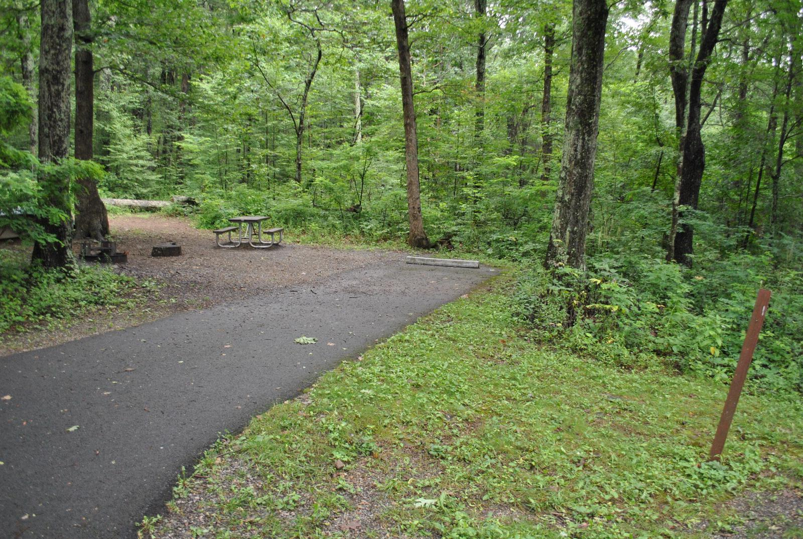 Mathews Arm Campground – Site A007