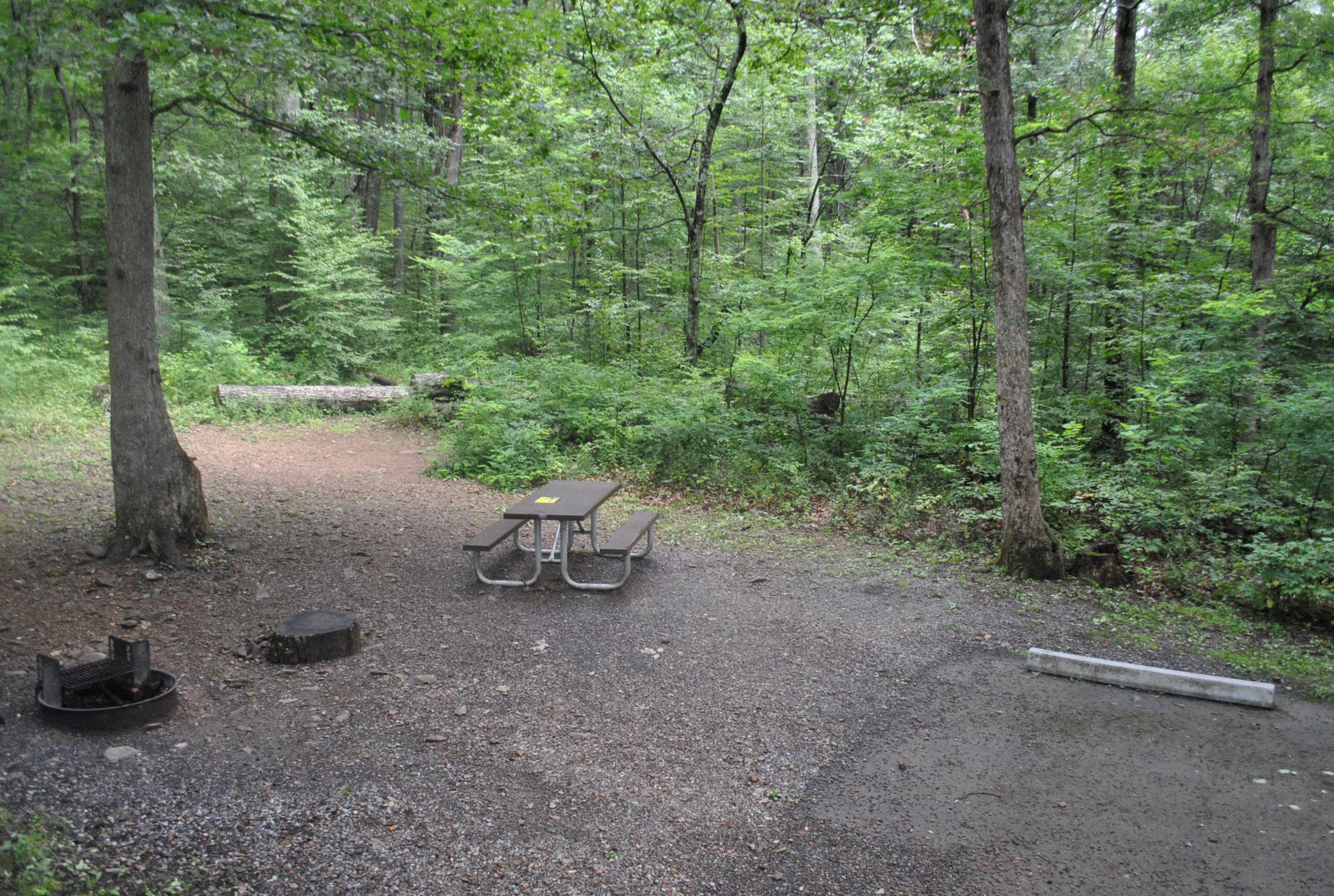 Mathews Arm Campground – Site A007