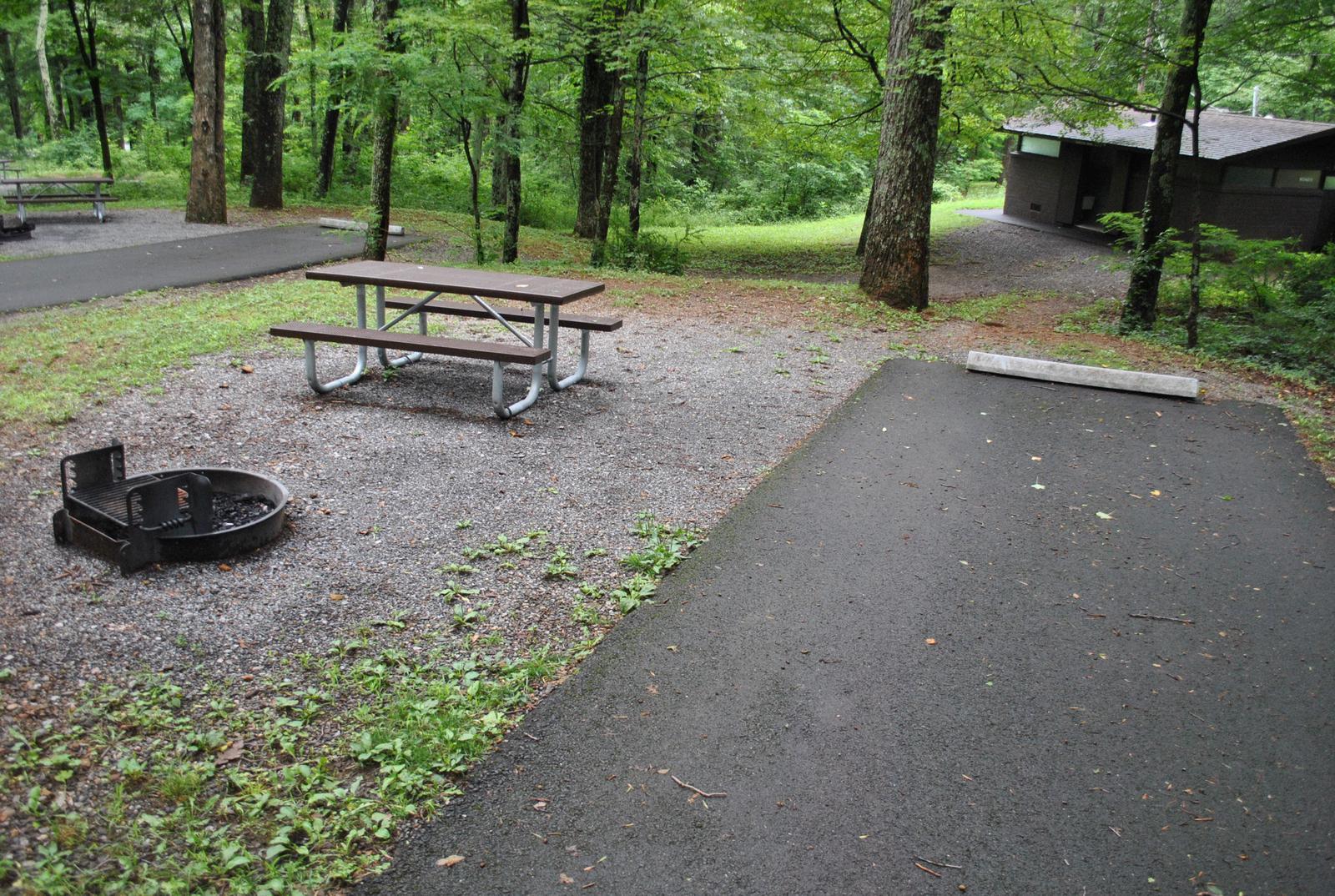 Mathews Arm Campground – Site A008