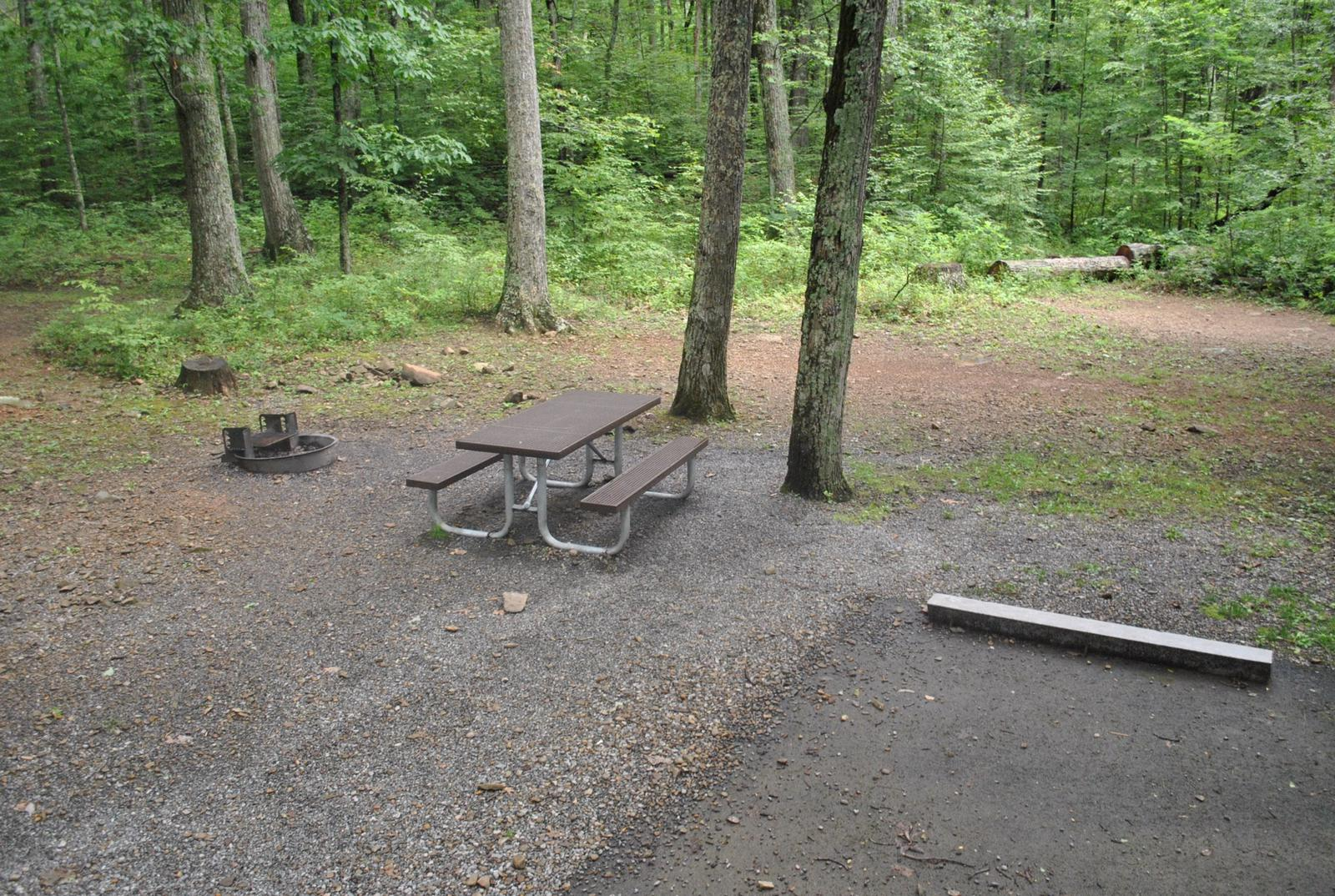 Mathews Arm Campground – Site A009