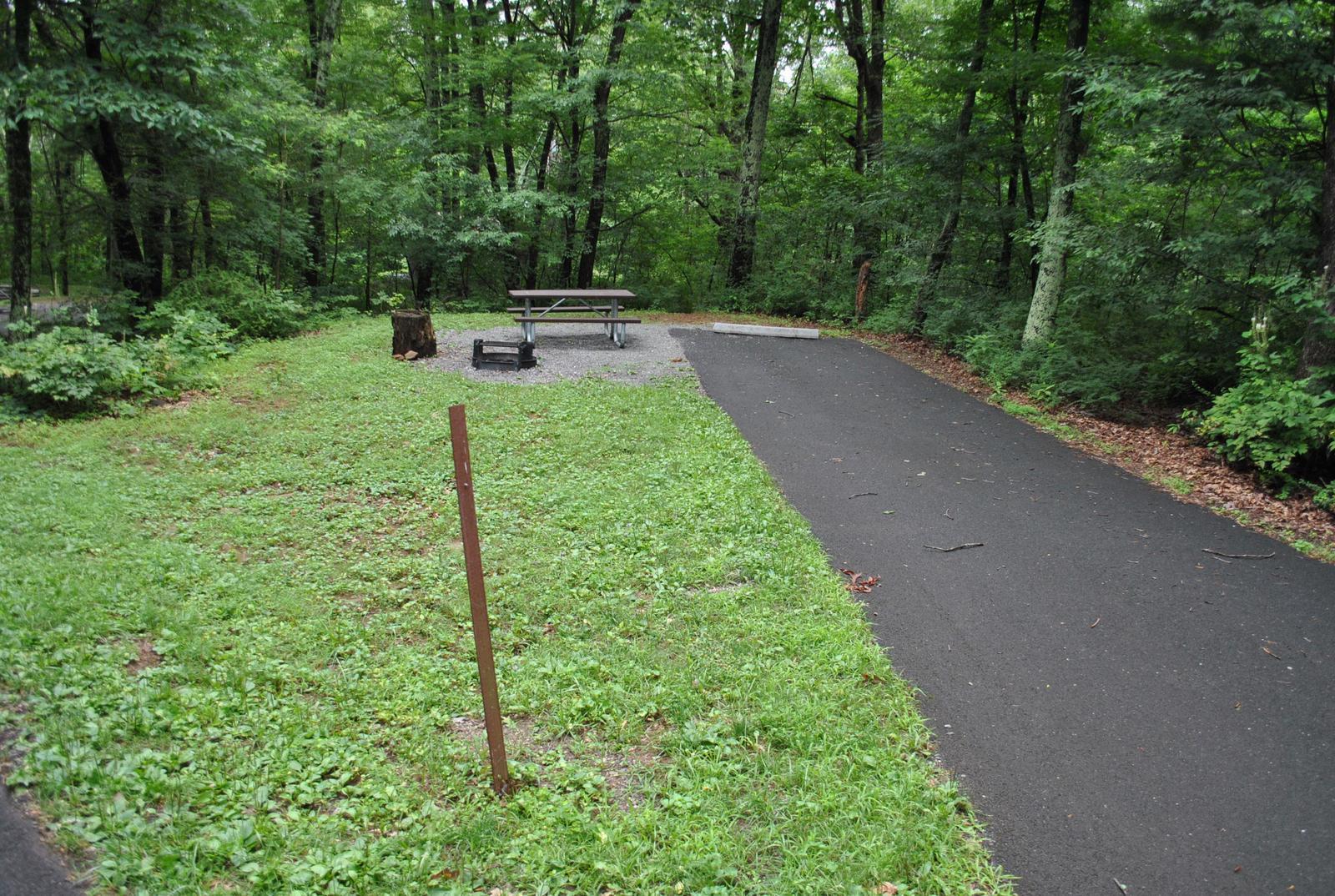 Mathews Arm Campground – Site A010