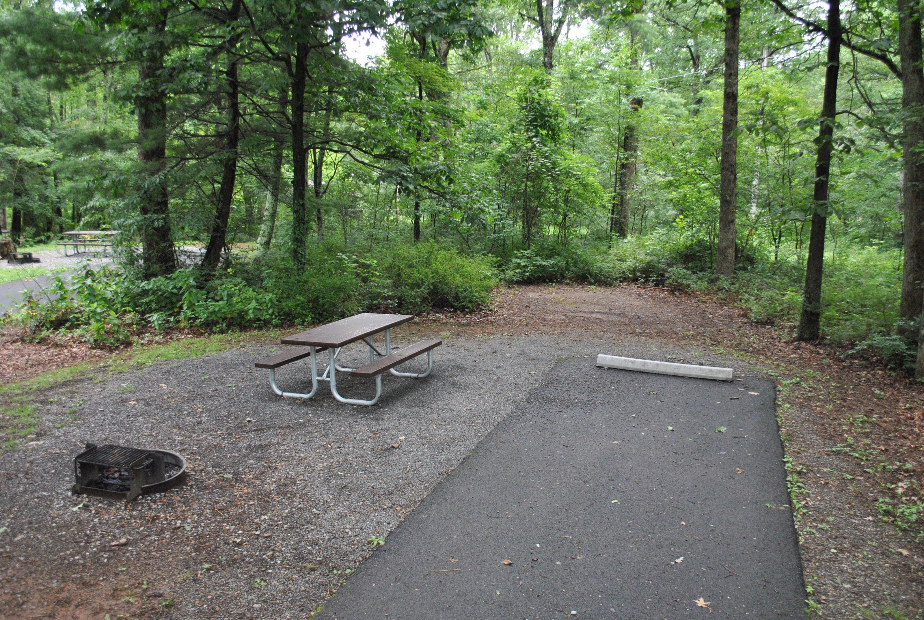 Mathews Arm Campground – Site A012