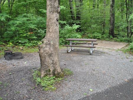 Mathews Arm Campground – Site A013
