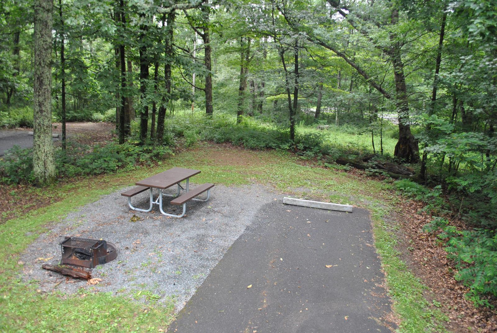 Mathews Arm Campground – Site A014