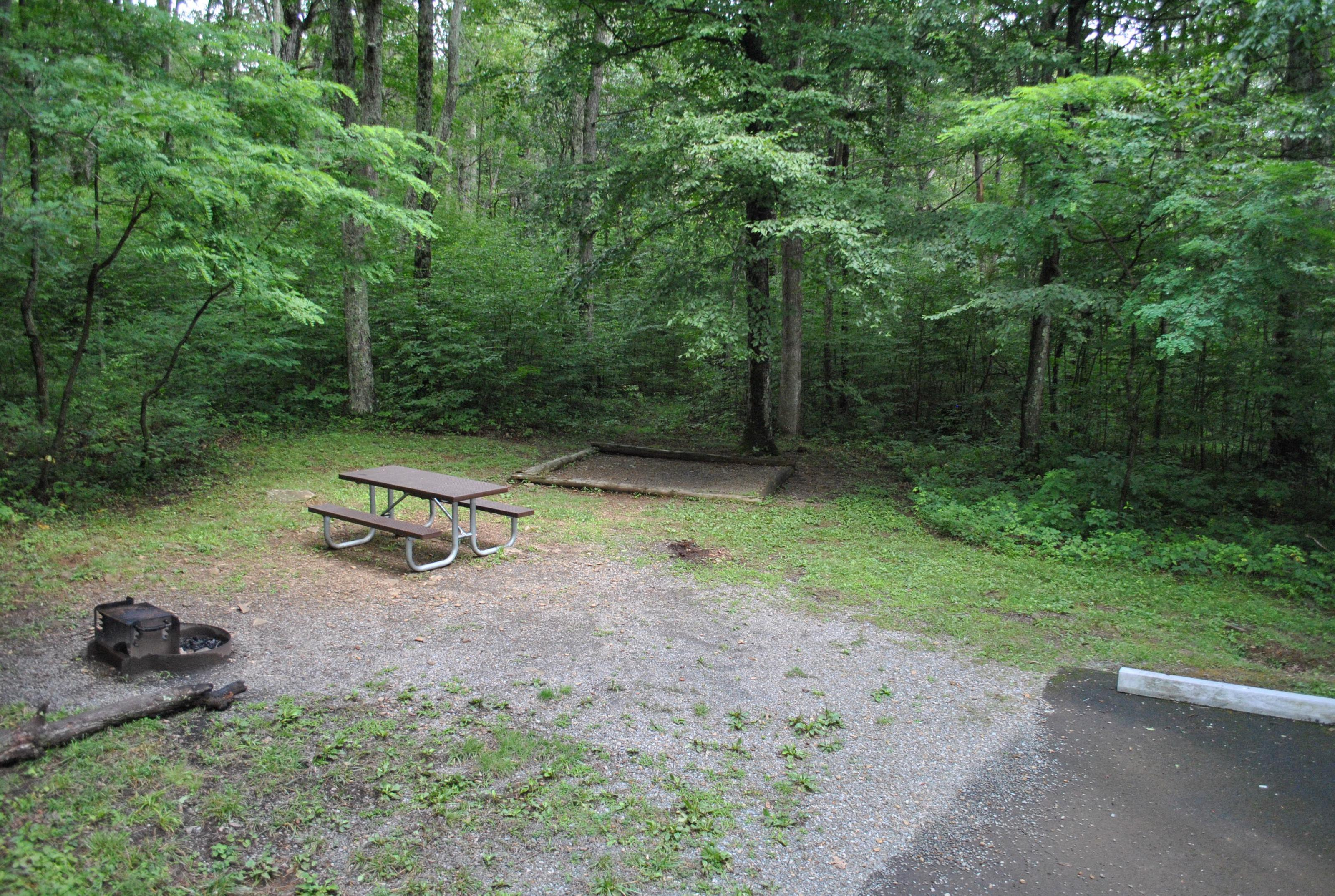 Mathews Arm Campground – Site A015