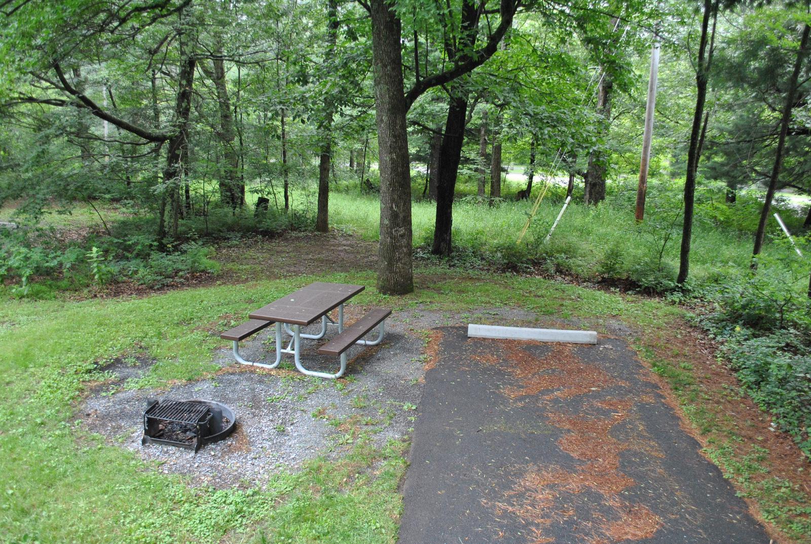 Mathews Arm Campground – Site A016
