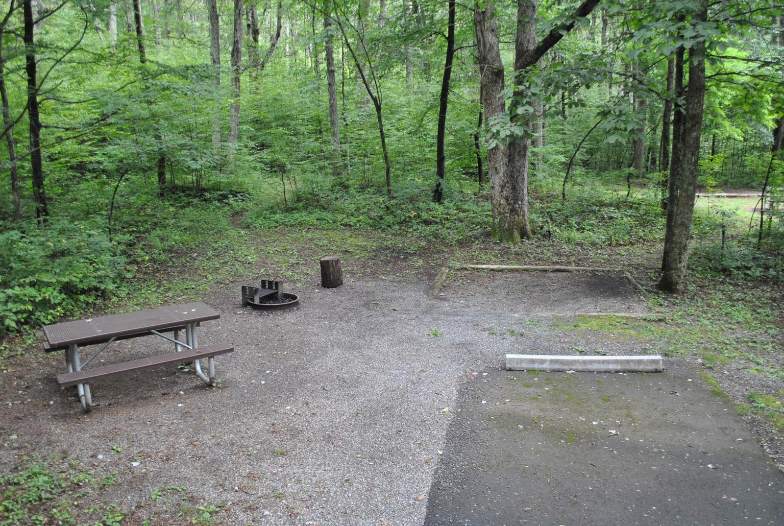 Mathews Arm Campground – Site A017