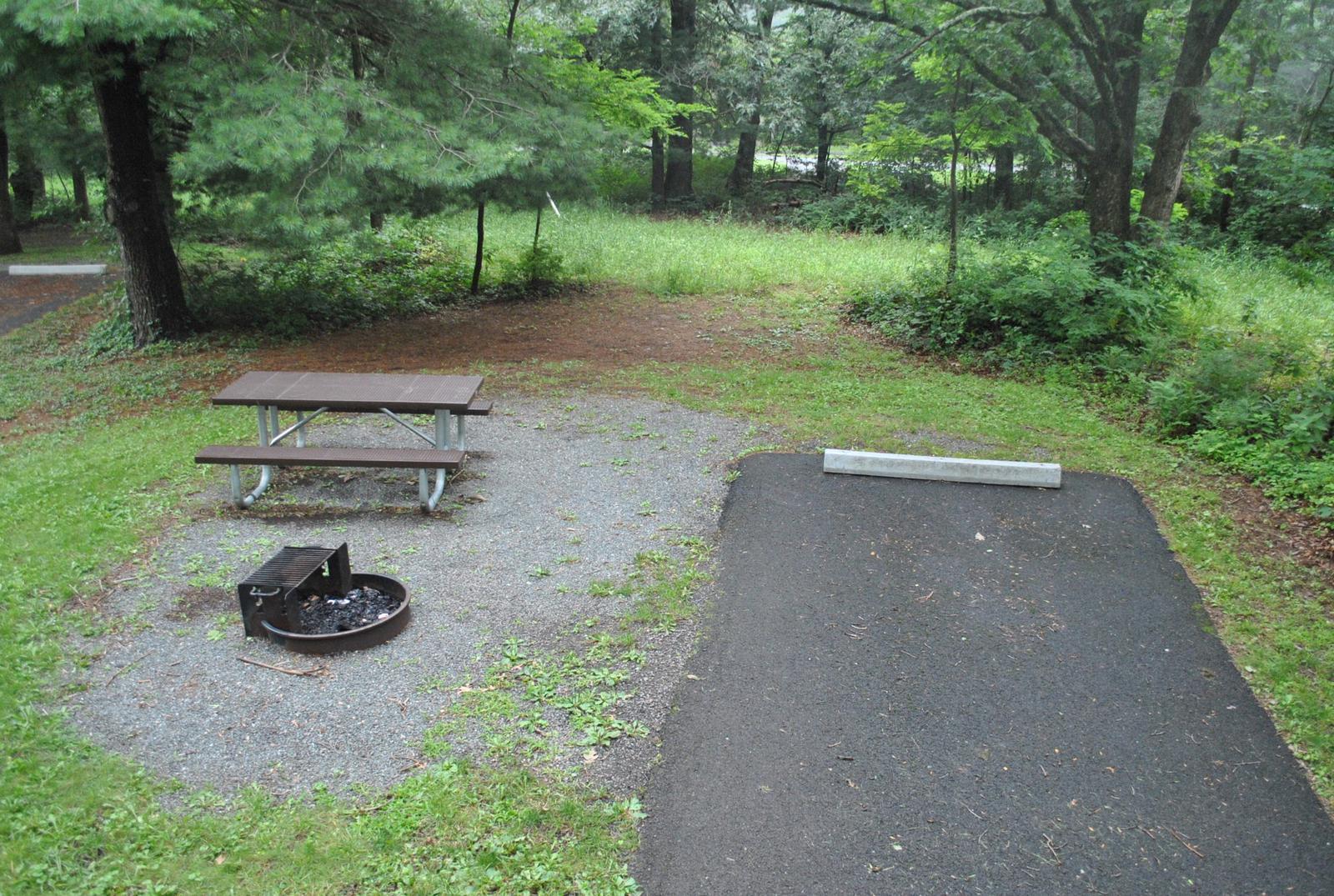 Mathews Arm Campground – Site A018