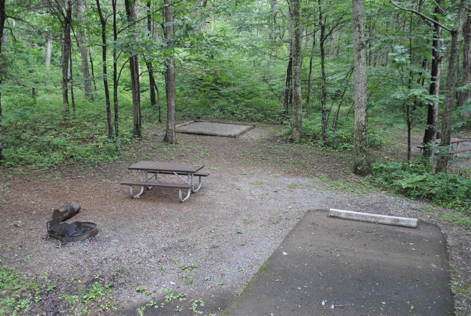 Mathews Arm Campground – Site A019