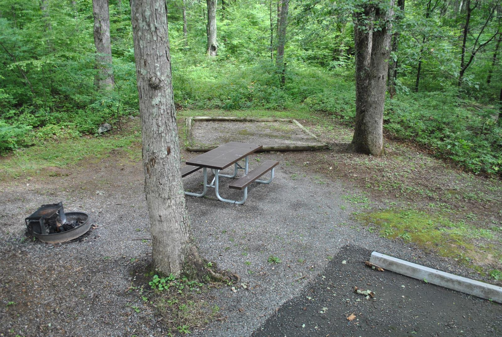 Mathews Arm Campground – Site A020