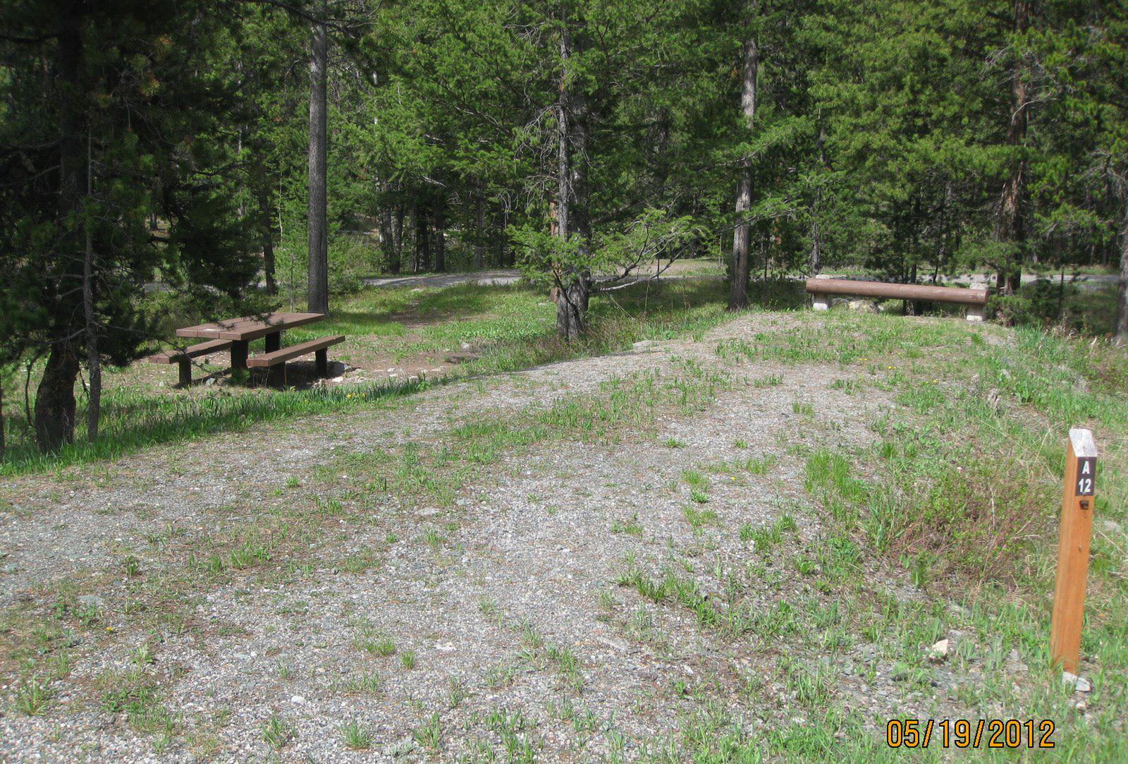 Site A12, campsite surrounded by pine trees, picnic table & fire ringSite A12