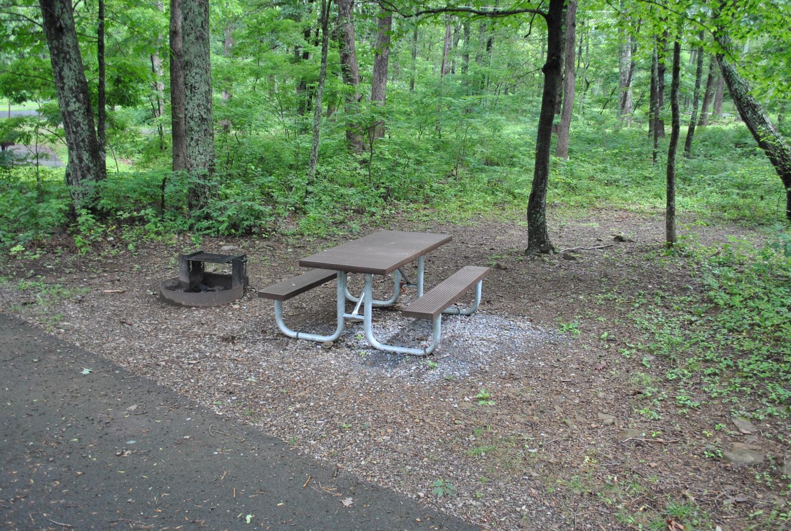 Mathews Arm Campground – Site A022