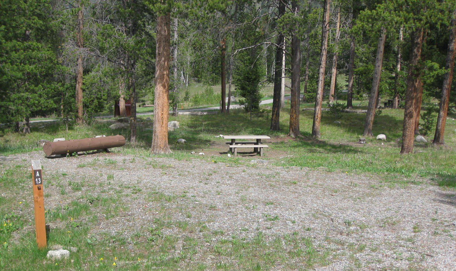 Site A13, campsite surrounded by pine trees, picnic table & fire ringSite A13