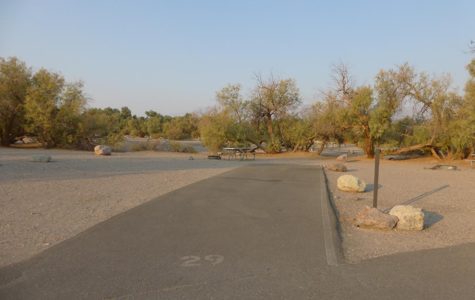 Furnace Creek Campground standard nonelectric site #29 with picnic table and fire ring.