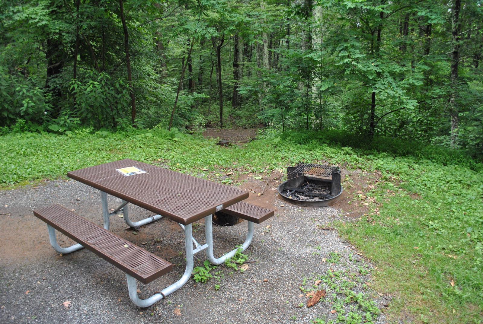 Mathews Arm Campground – Site A024