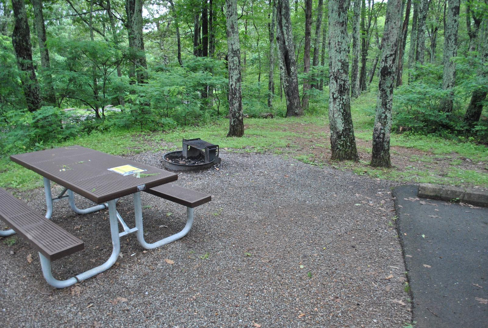 Mathews Arm Campground – Site A026