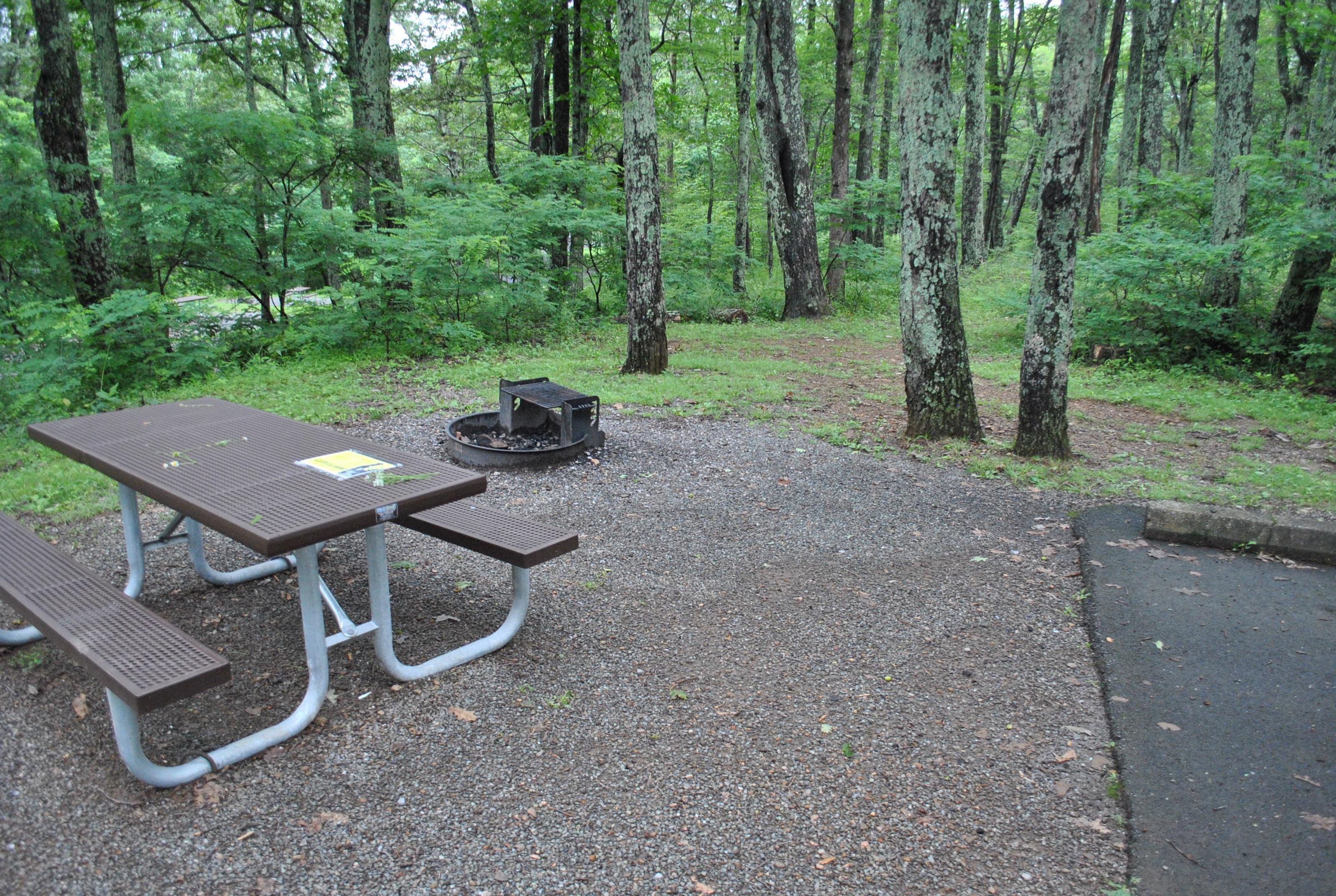 Mathews Arm Campground – Site A026
