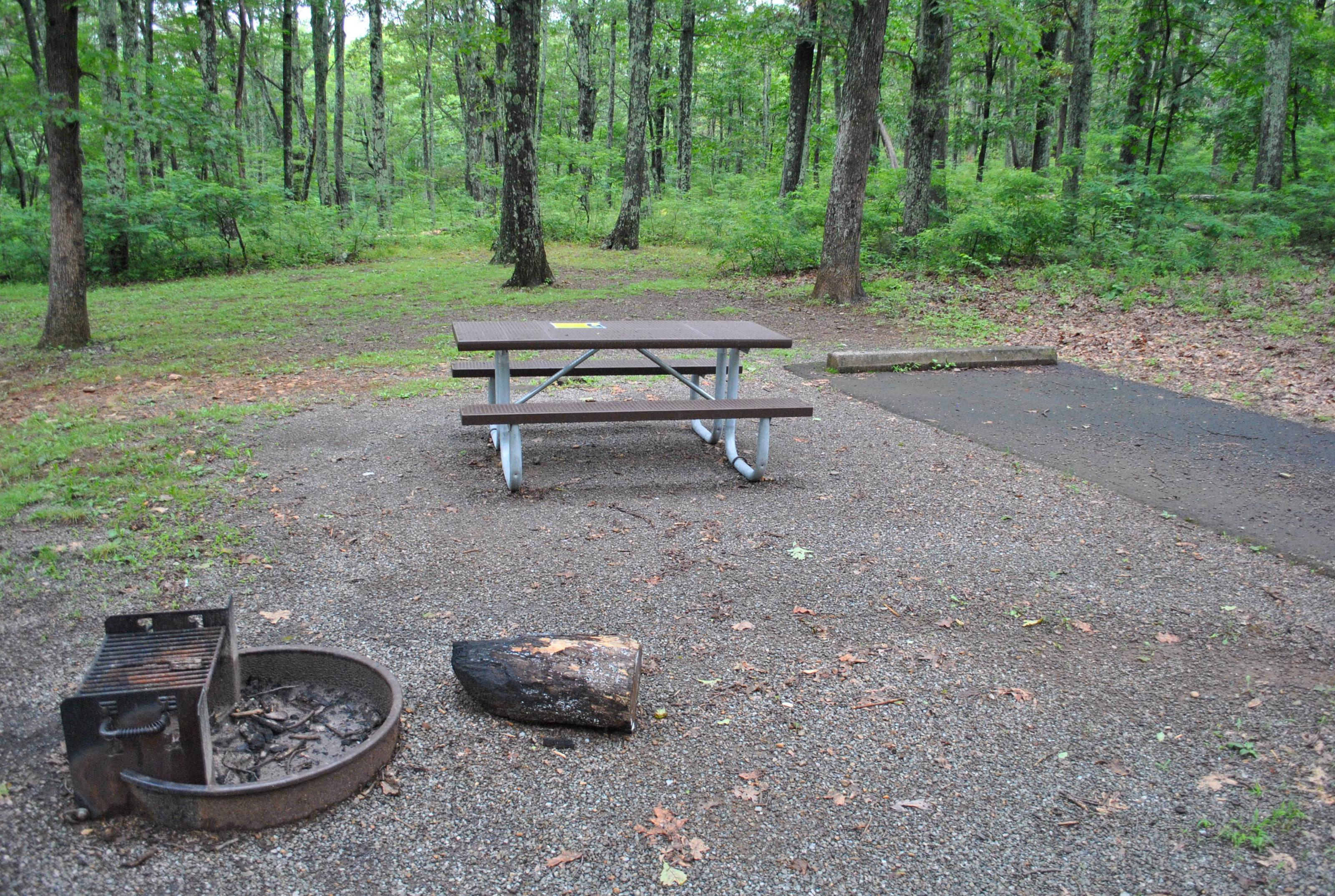 Mathews Arm Campground – Site A028