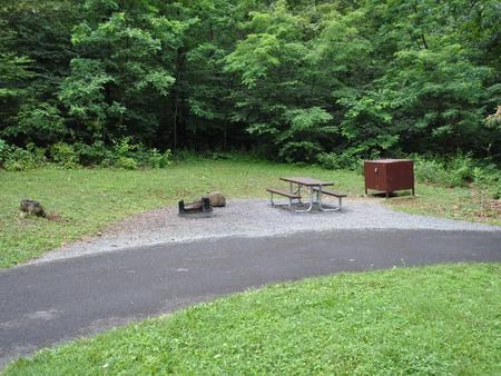 Mathews Arm Campground – Site A031