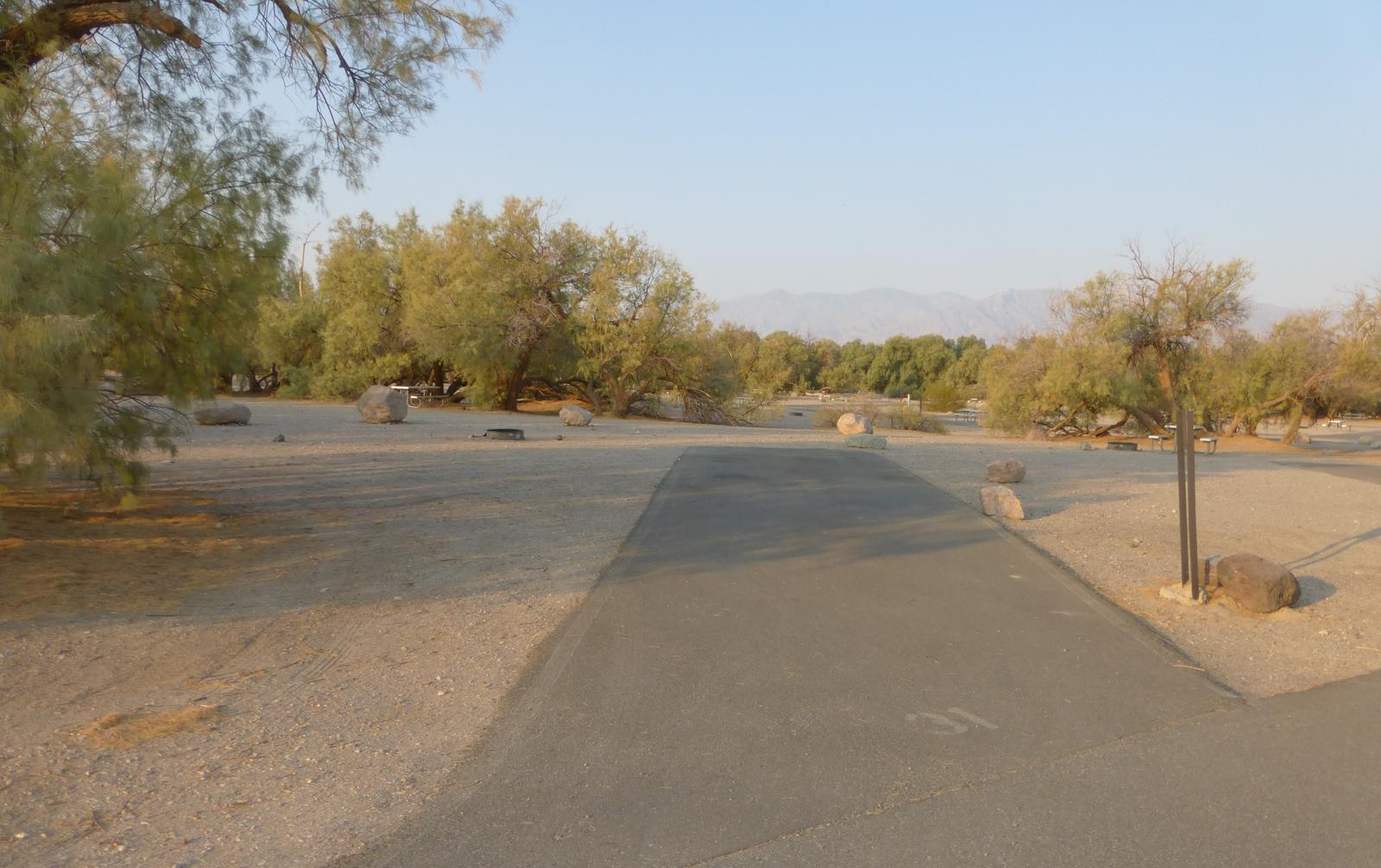 Furnace Creek Campground standard nonelectric site #31 with picnic table and fire ring.