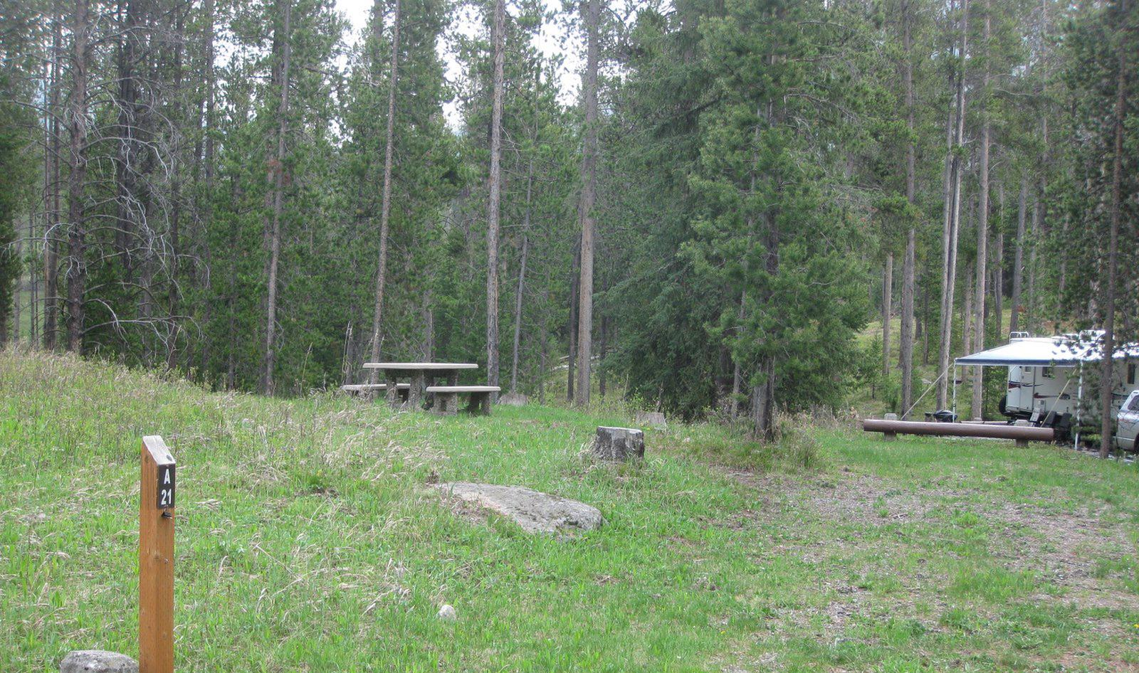 Site A21, campsite surrounded by pine trees, picnic table & fire ringSite A21