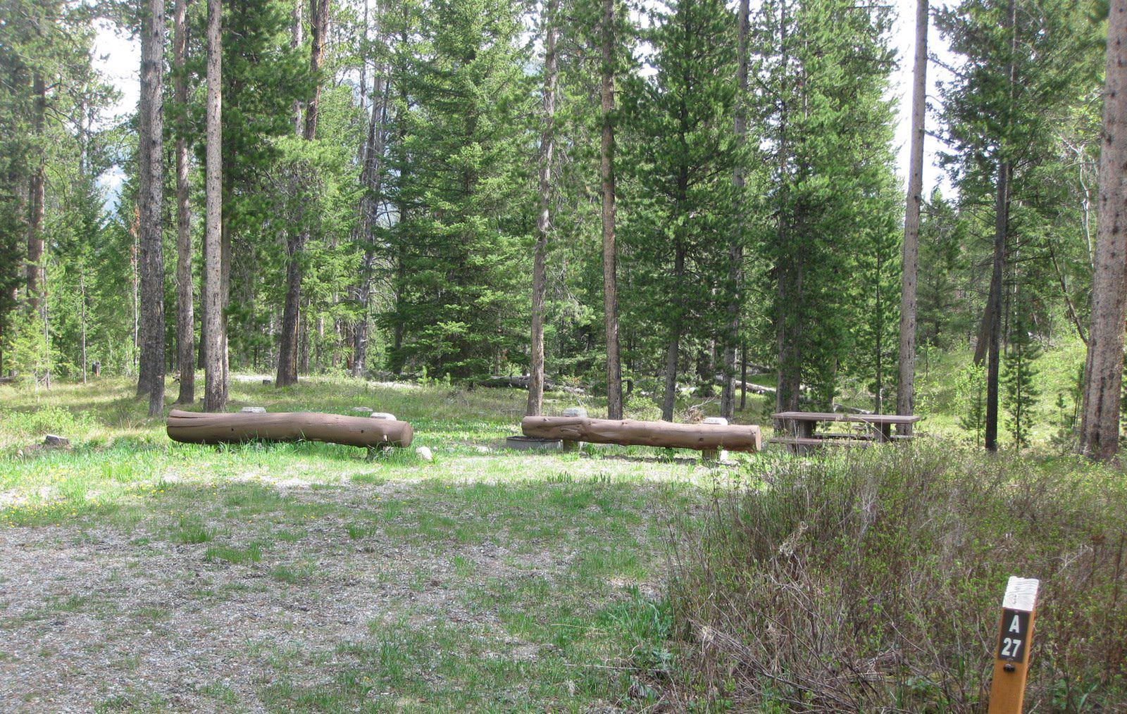 Site A27, campsite surrounded by pine trees, picnic table & fire ringSite A27