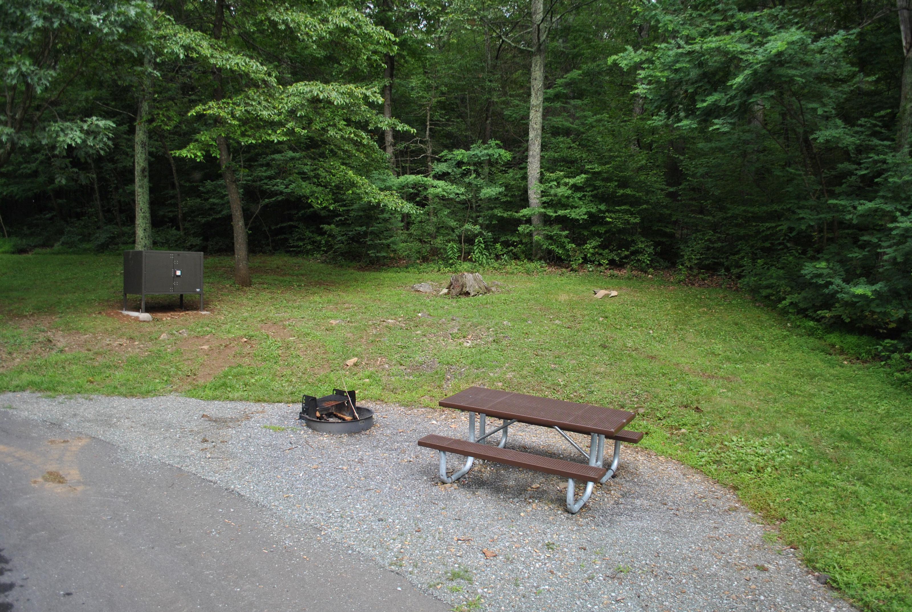 Mathews Arm Campground – Site A037