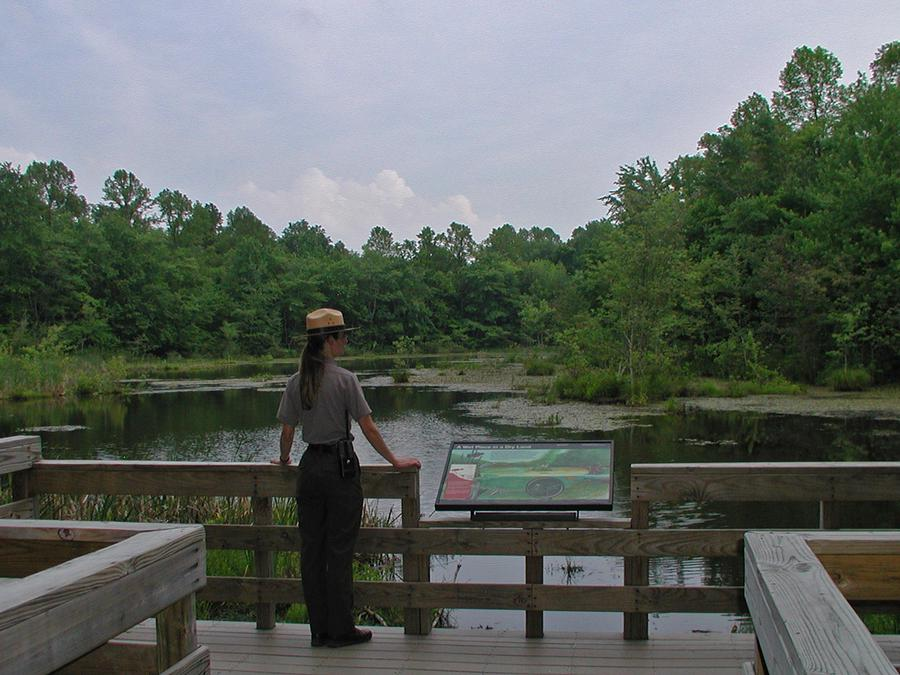 Park Ranger overlooking Sloans Crossing Pond