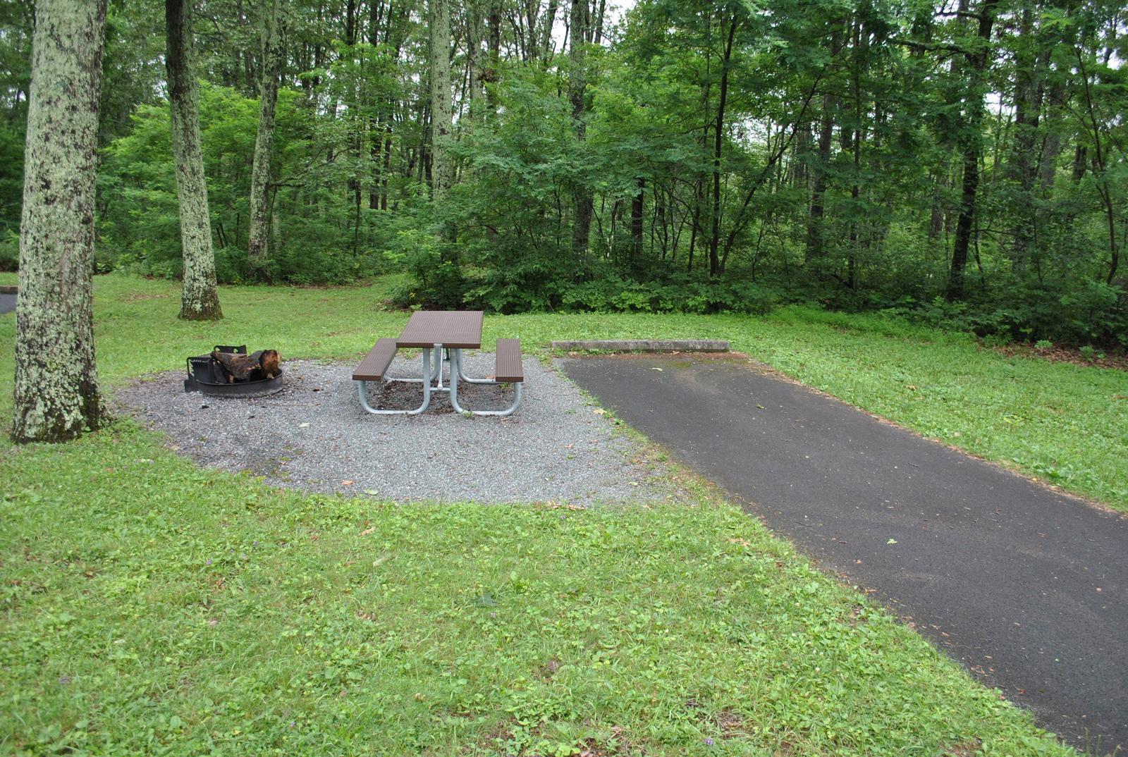 Mathews Arm Campground – Site A038