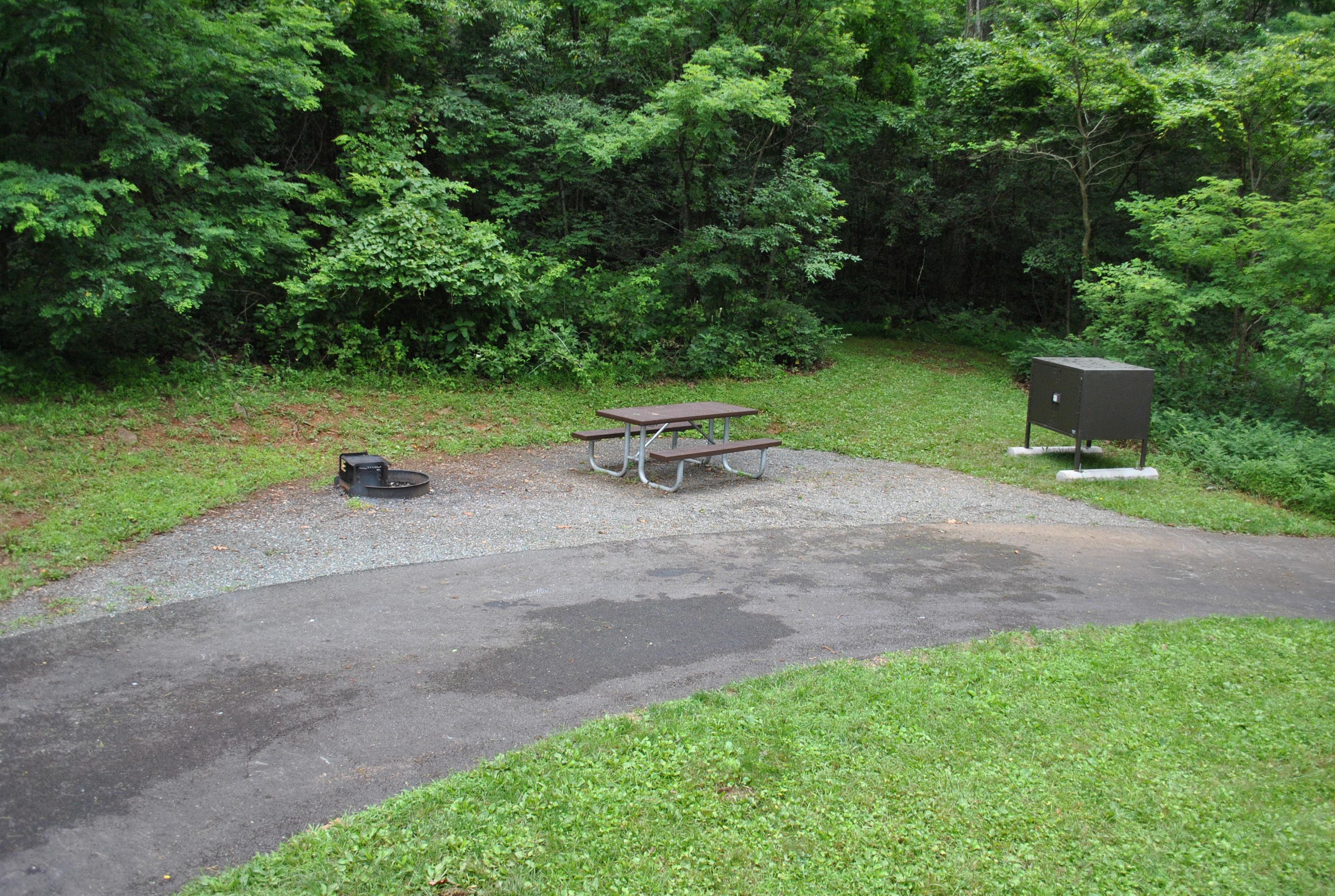 Mathews Arm Campground – Site A041