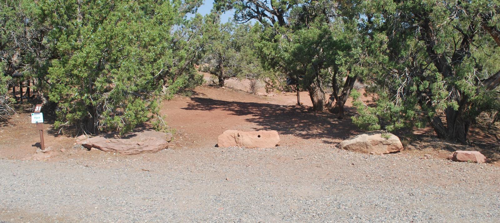 Loop B Site 31