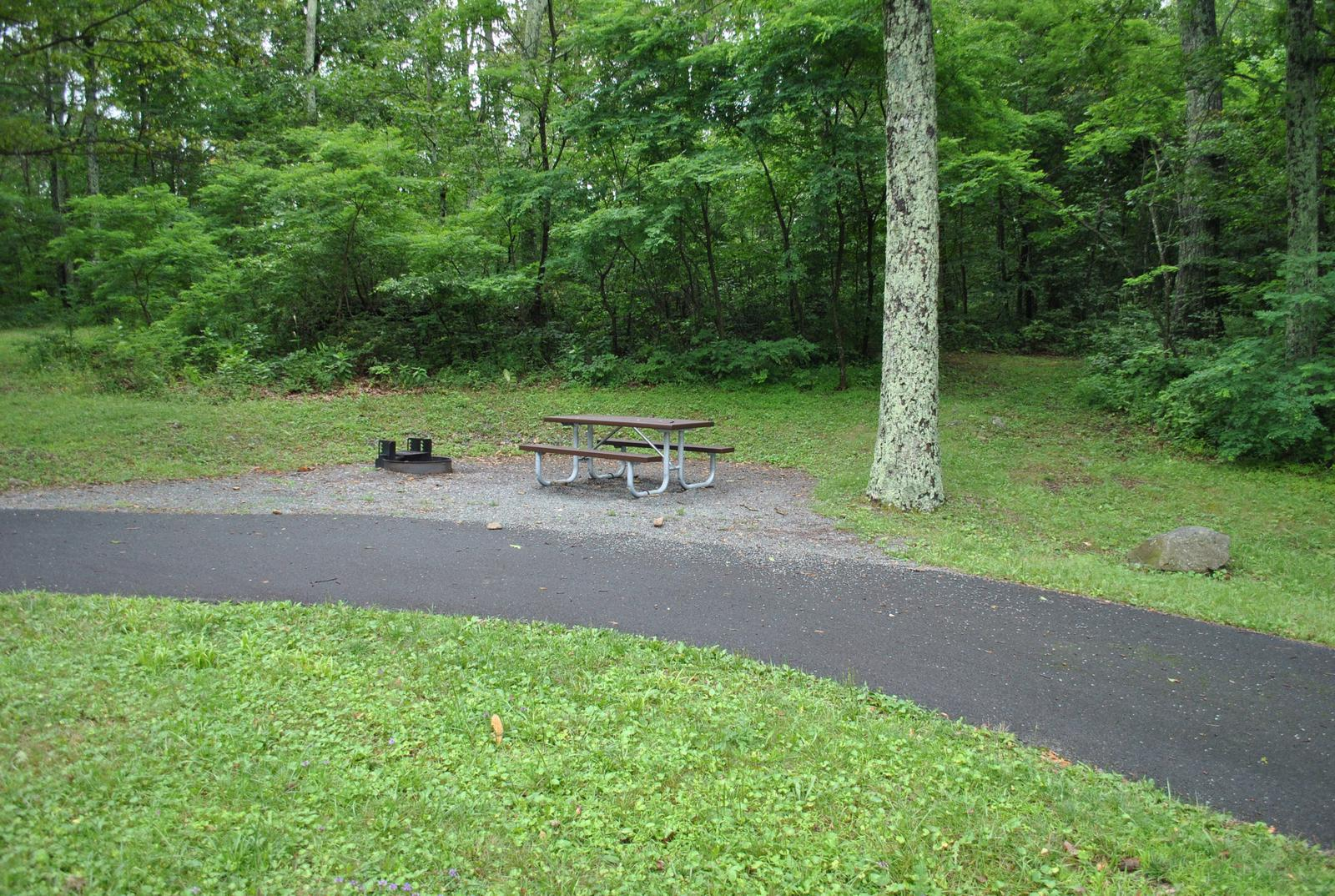 Mathews Arm Campground – Site A043