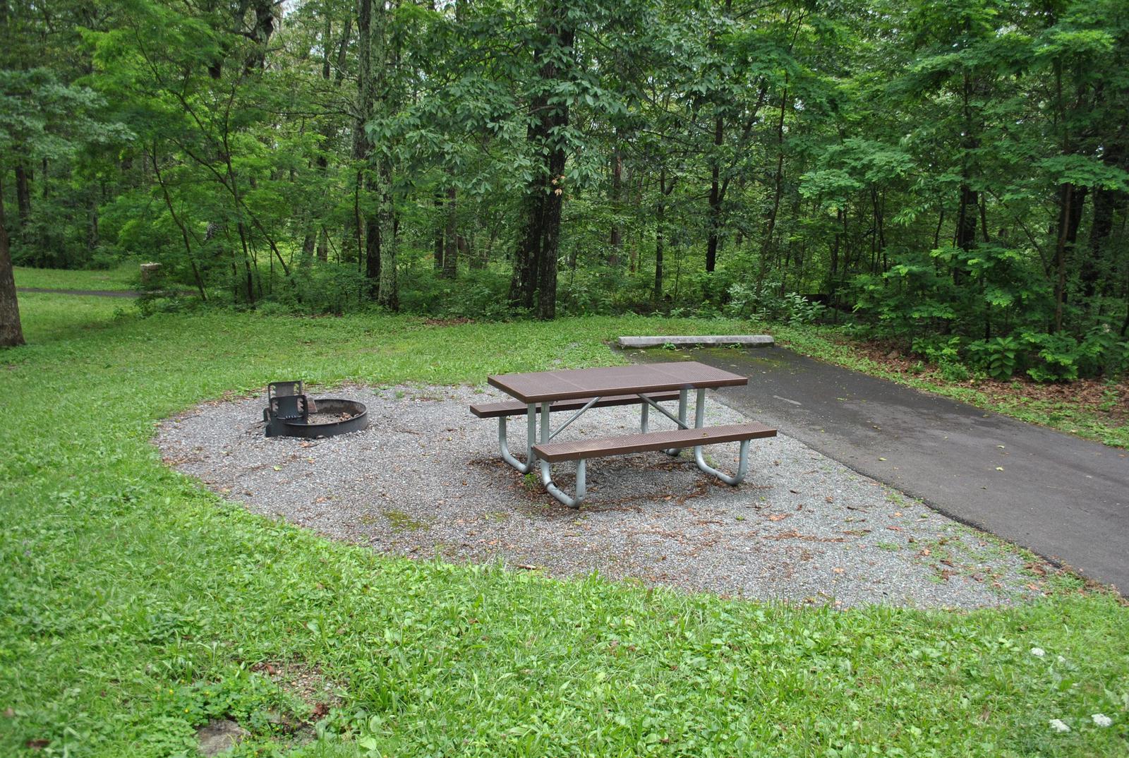 Mathews Arm Campground – Site A044