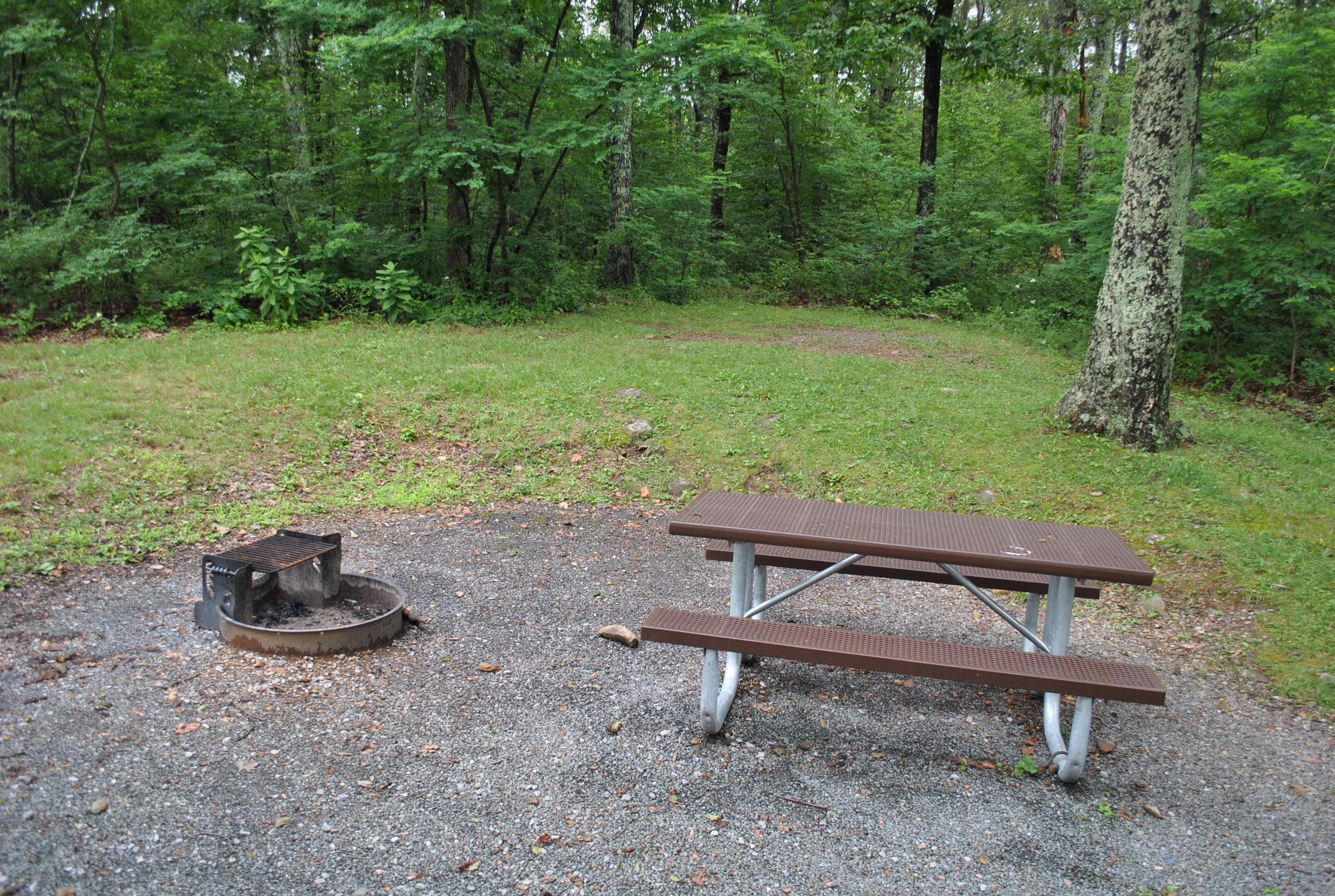 Mathews Arm Campground – Site A045