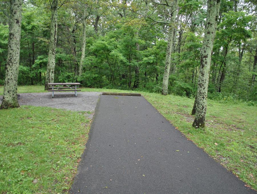 Mathews Arm Campground – Site A046