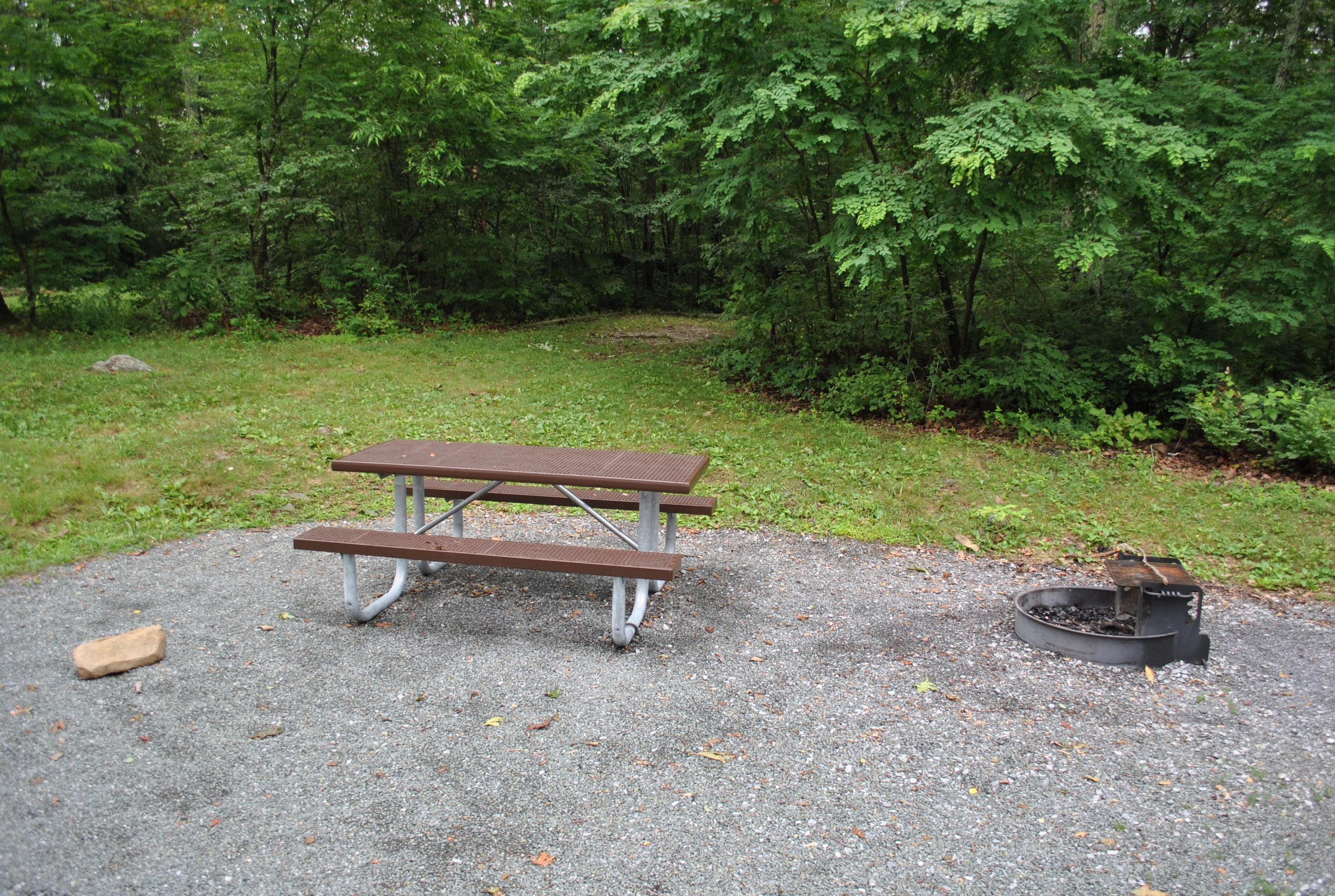 Mathews Arm Campground – Site A047