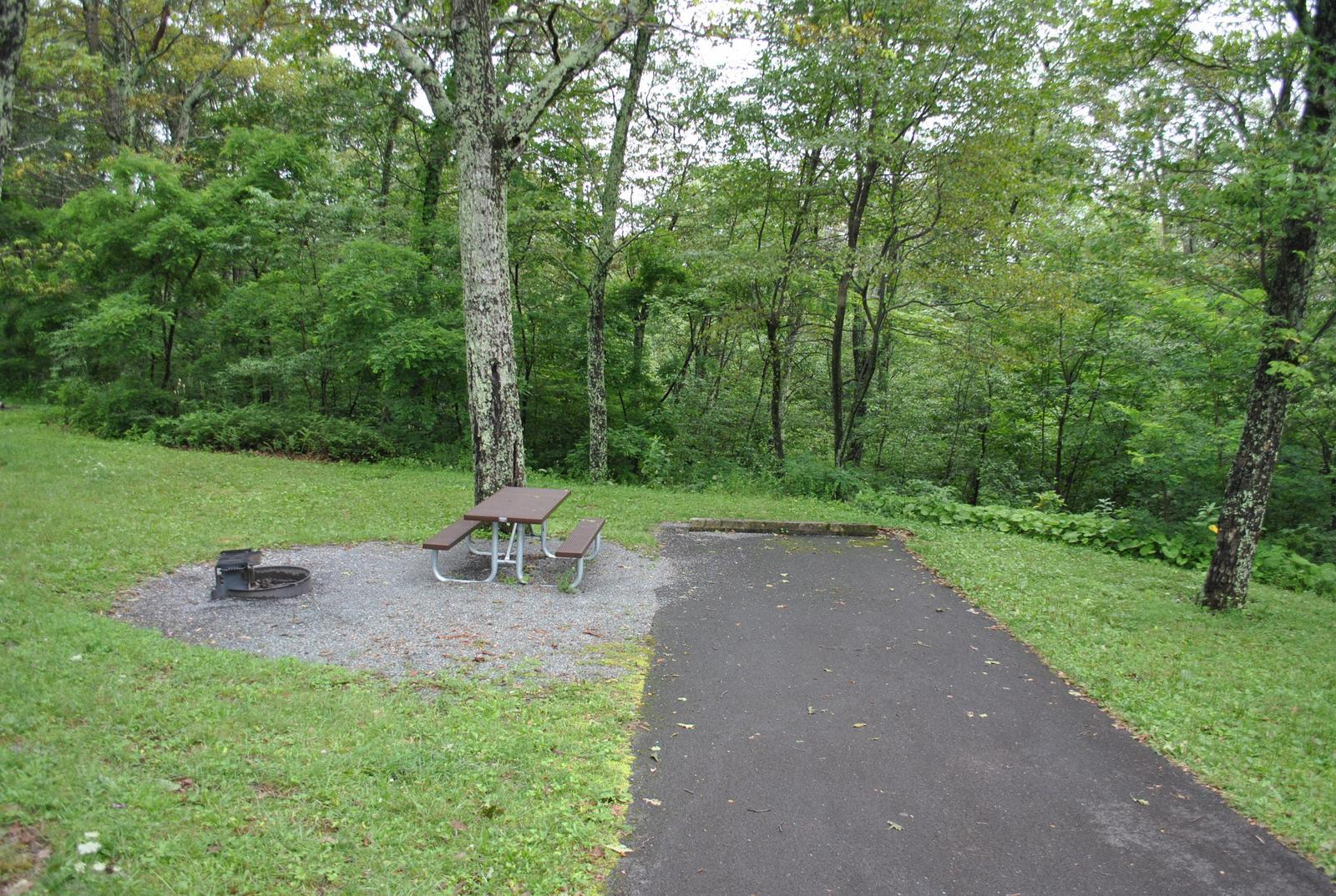 Mathews Arm Campground – Site A050