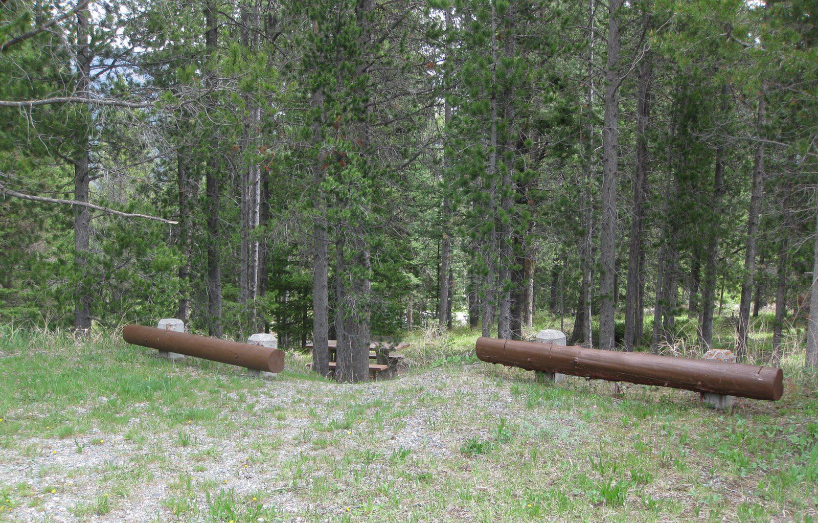 Site B15, campsite surrounded by pine trees, picnic table & fire ringSite B15