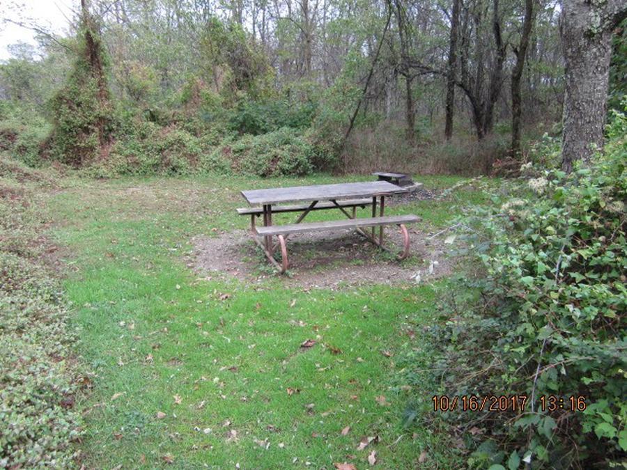 Loft Mountain Campground - Site G199