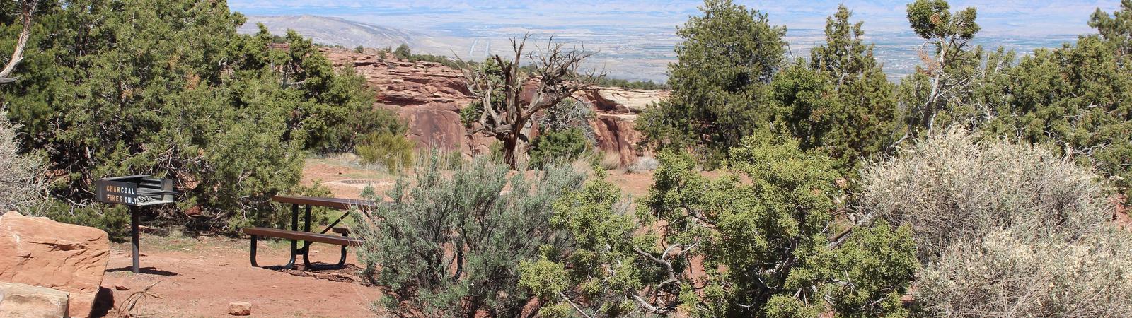 Loop B Site 37
