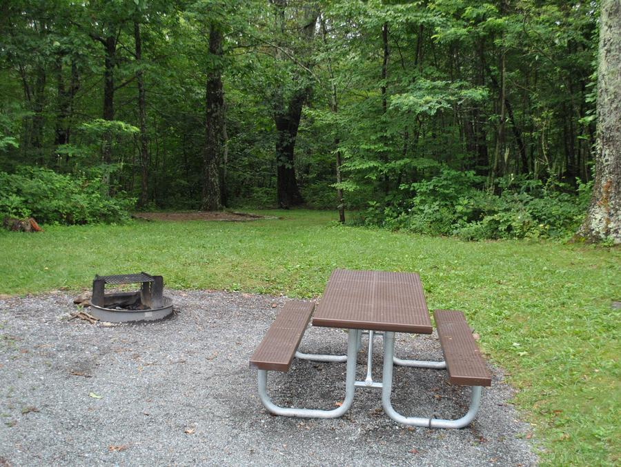 Mathews Arm Campground – Site A053
