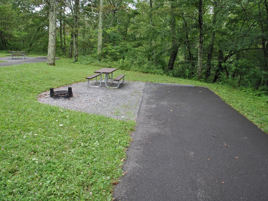 Mathews Arm Campground – Site A054