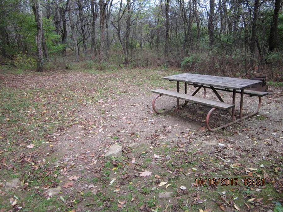 Loft Mountain Campground - Site G205