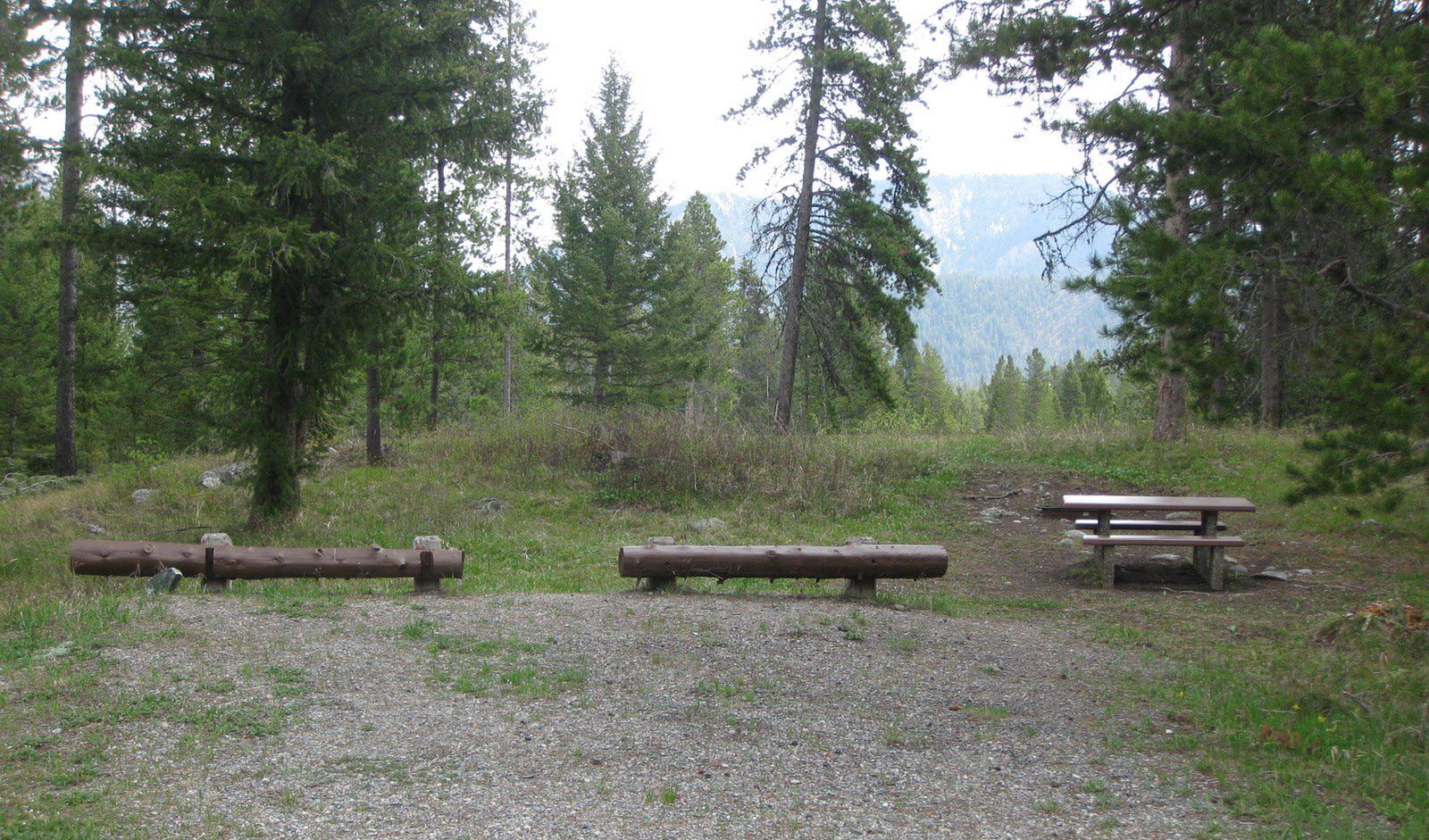 Site B6, campsite surrounded by pine trees, picnic table & fire ringSite B6