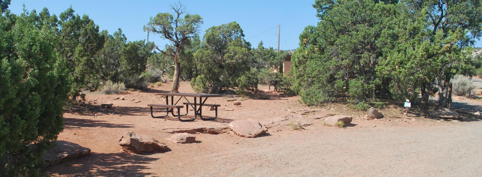 Loop B Site 40