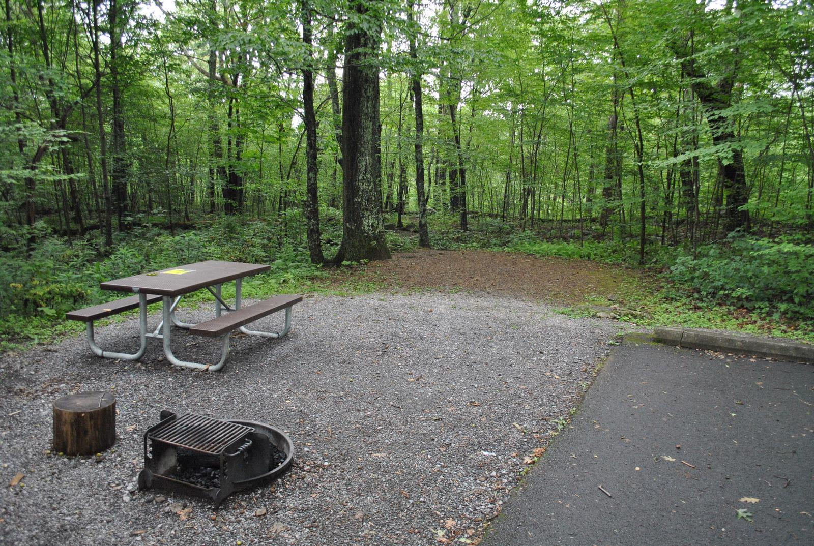 Mathews Arm Campground – Site A058