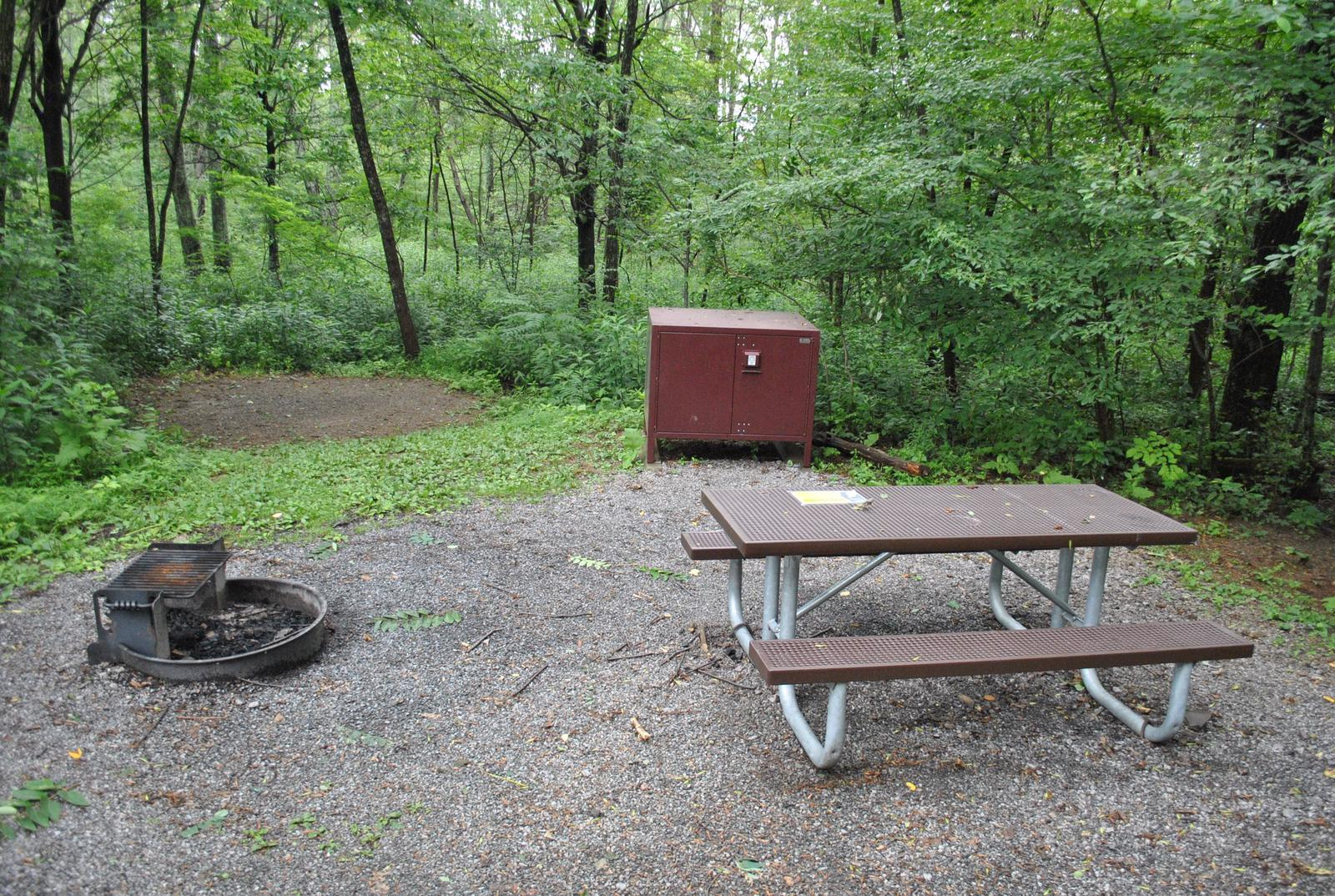 Mathews Arm Campground – Site A059