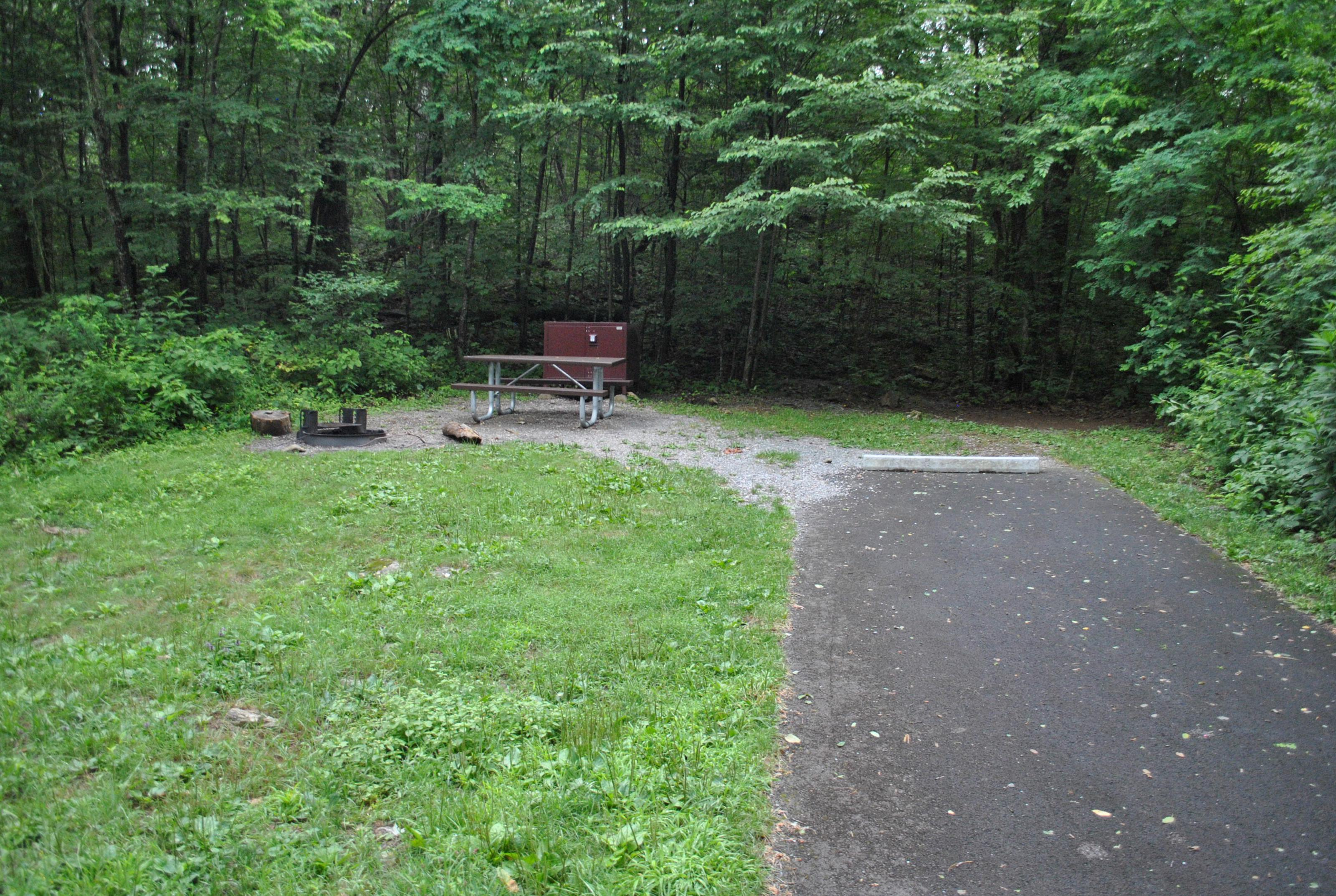 Mathews Arm Campground – Site A060