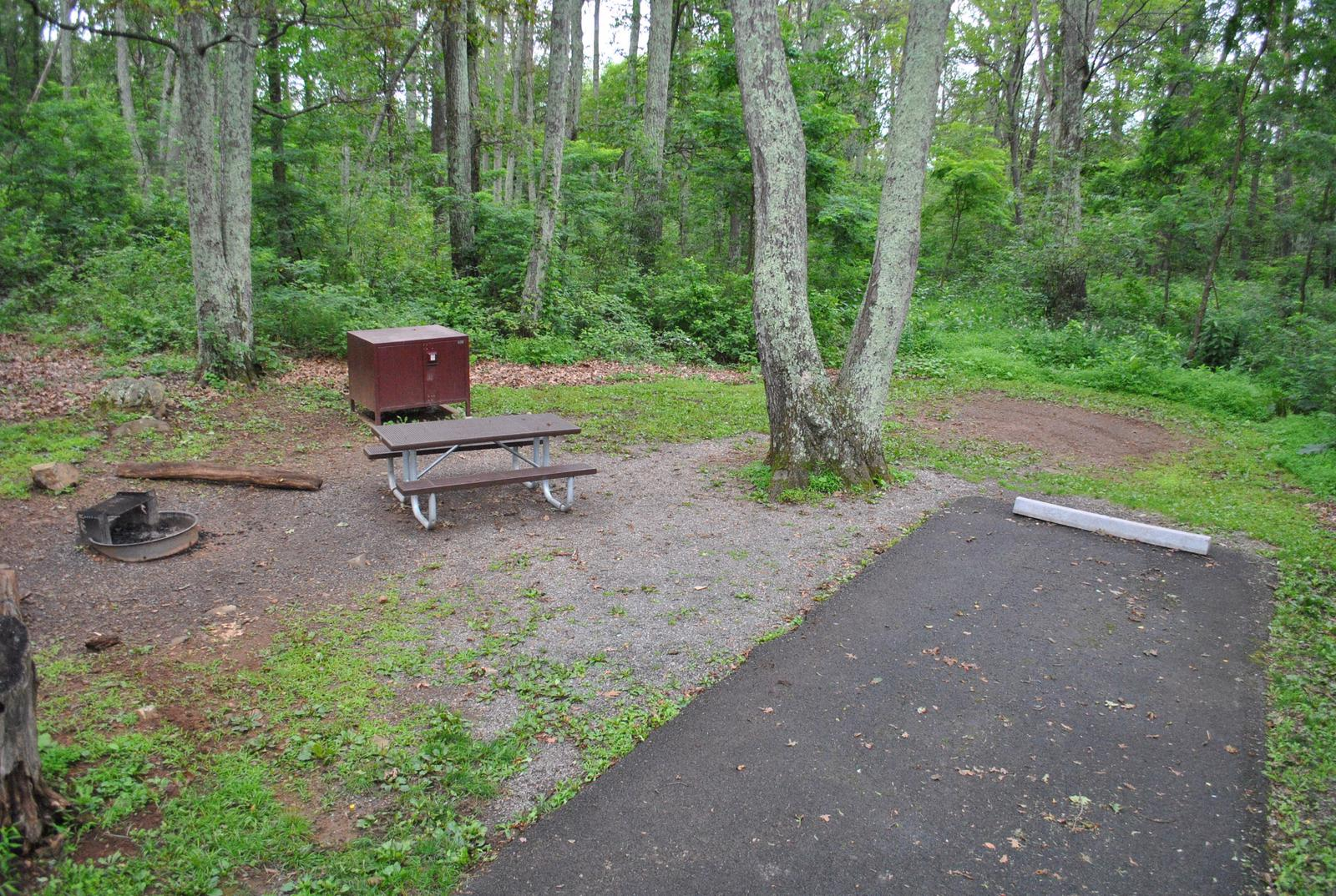 Mathews Arm Campground – Site A061