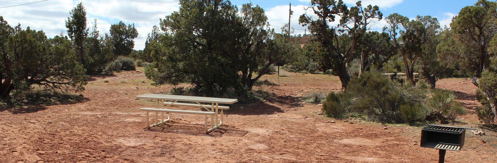 Loop B Site 44